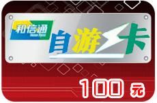 自游卡100元(接口卡)